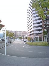 24886-2.jpg