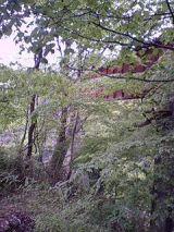 25143-4.jpg