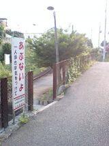 25459-3.jpg