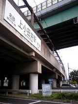 26171-3.jpg