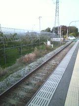 27071-3.jpg