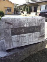 35620-1.jpg