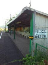 38037-1.jpg