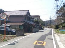 43066-6.jpg