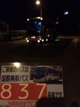 46571.jpg