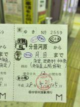 51353-1.jpg