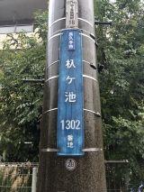 56679-3.jpg