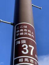 56857-1.jpg