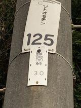 57167-2.jpg