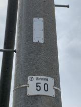 58362.jpg